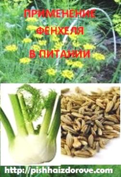 Применение фенхеля в питании