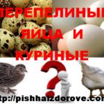 Перепелиные яйца и куриные