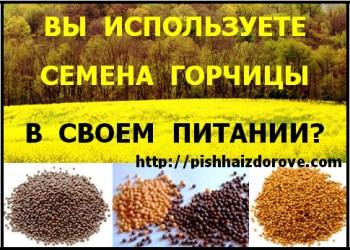 Семена горчицы