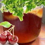 Drinks-from-the-Kombucha-recipes