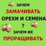Зачем замачивать семена и орехи