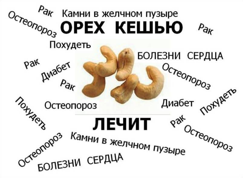 О пользе ореха кешью