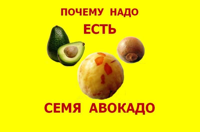 Почему надо есть семя авокадо