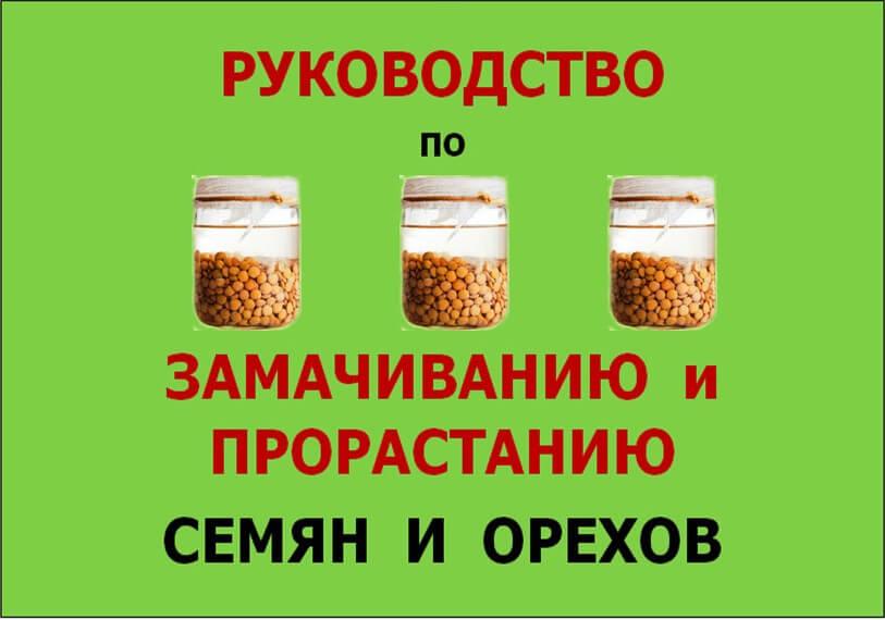 Руководство по замачиванию и прорастанию семян и орехов