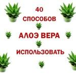 40-способов-использовать-Алоэ-Верв