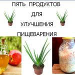 5 продуктов для улучшения пищеварения (1)