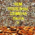 Чем-полезны-семена-льна