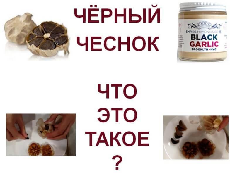 Что-такое-чёрный-чеснок