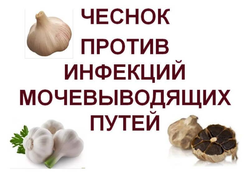 чеснок и лук против паразитов