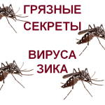 Dirty-Secrets-Zika-virus
