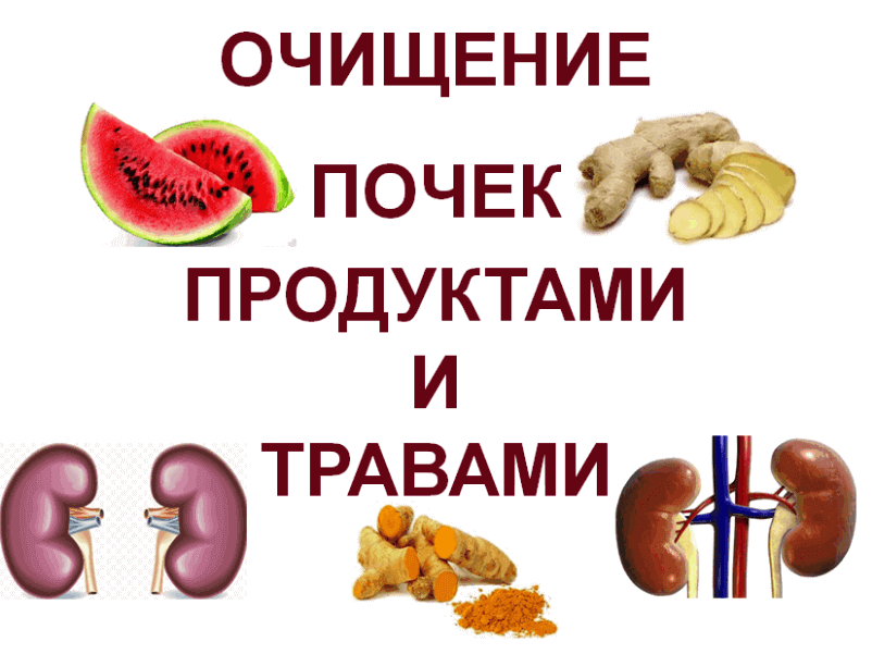 Kidney-Cleansing-products-and-herbs