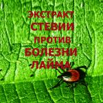 Stevia-Extract-against-Lyme-disease