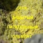 Sulfur-forgotten-nutrient