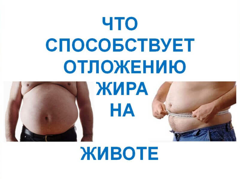 What-promotes-the-deposition-of-fat-in-the-abdomen