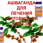Ashwagandha-to-treat-thyroid
