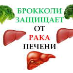 Broccoli-protects-against-liver-cancer