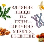 Effect-of-nutrition-on-genes