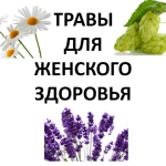 Herbs-for-Womens-Health