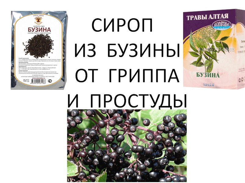 Elderberry-syrup-from-the-flu-and-colds