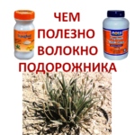 The-useful-fiber-psyllium