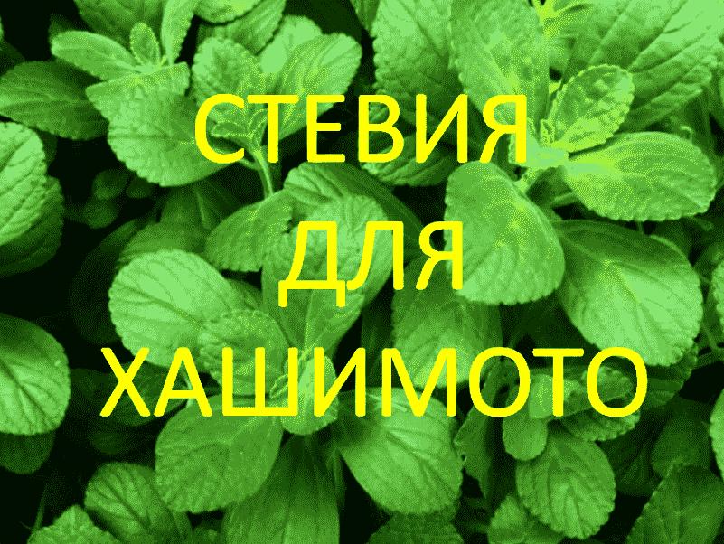 Stevia-for-Hashimoto