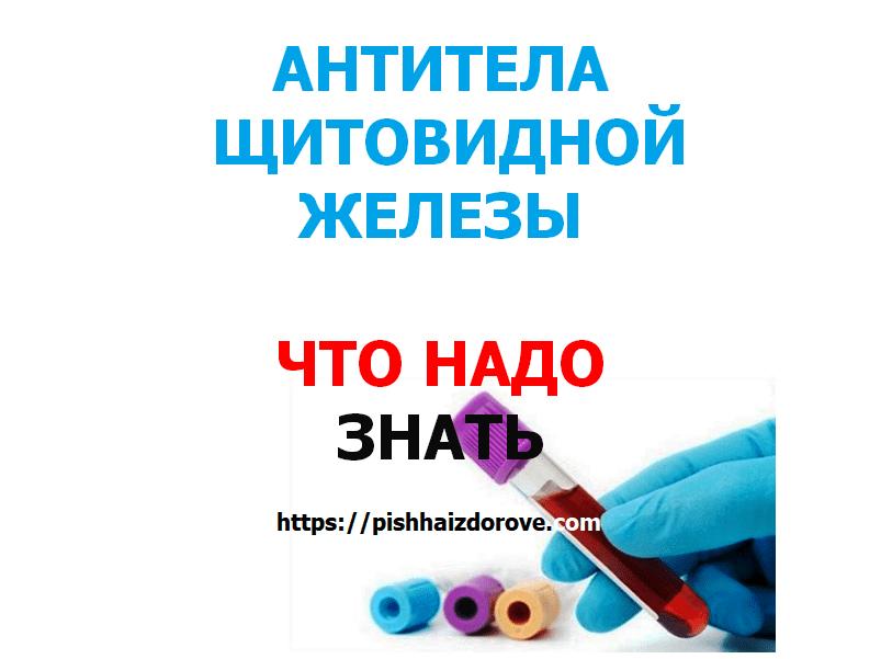 Antibodies-of-the-thyroid-gland