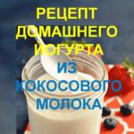 Recipe-for-homemade-yogurt-from-coconut-milk